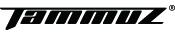 타무즈 인터내셔널
