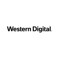 Western Digital WD BLUE SN550 M.2 NVMe (500GB) SSD 체험단