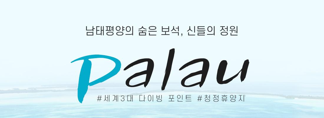 남태평양의 숨은 보석, 신들의 정원 Palau #세계3대 다이빙 포인트 #청정휴양